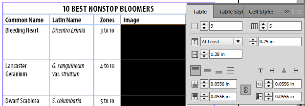 Increasing cell size in InDesign tables.